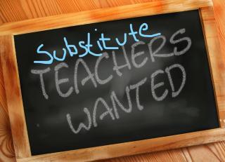 Seeking Substitutes
